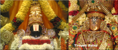 Vengadasalapathy Kovil|Place of Worship | Temples - Toronto